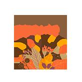 Logo do Parque Cerrado II | Apartamento Minha Casa Minha Vida | Tenda.com